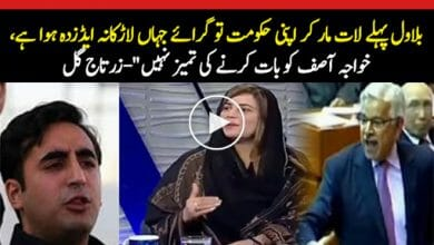 Photo of Zartaj Gul's befitting reply to Khawaja Asif and Bilawal Zardari